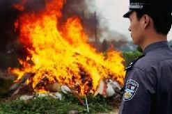 http://stopthedrugwar.com/files/chinadrugburning.jpg
