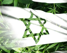 http://www.stopthedrugwar.org/files/israel-medical-marijuana-flag.jpg