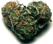http://stopthedrugwar.org/files/marijuanaheart.jpg